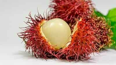 rambutan tropical fruit