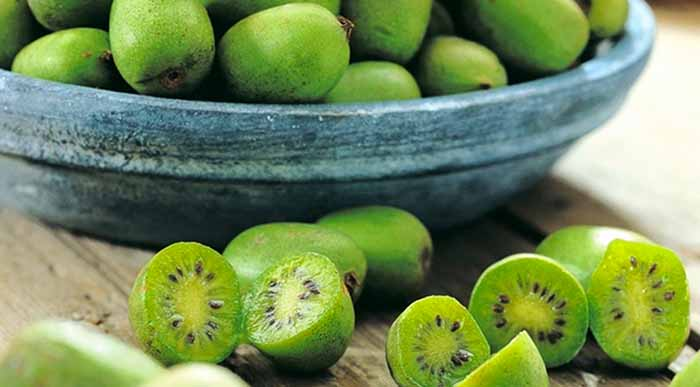 kiwi berries nutrition