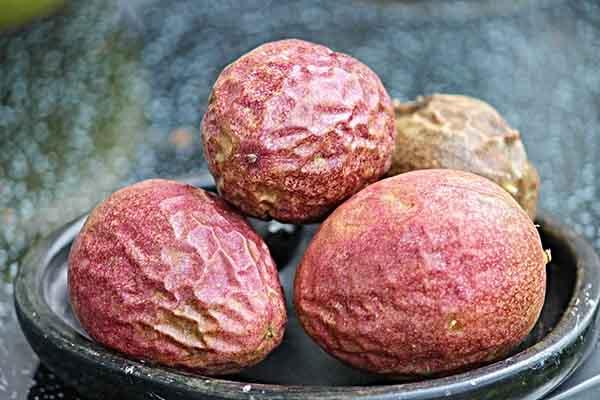 passion fruit nutrition