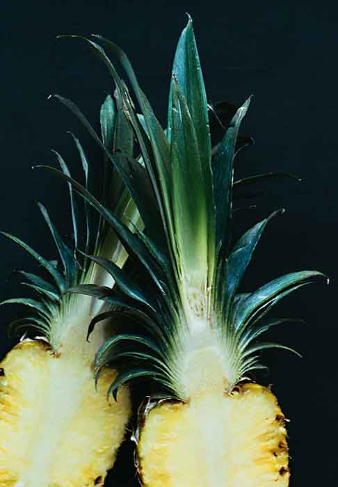 pineapples weight loss